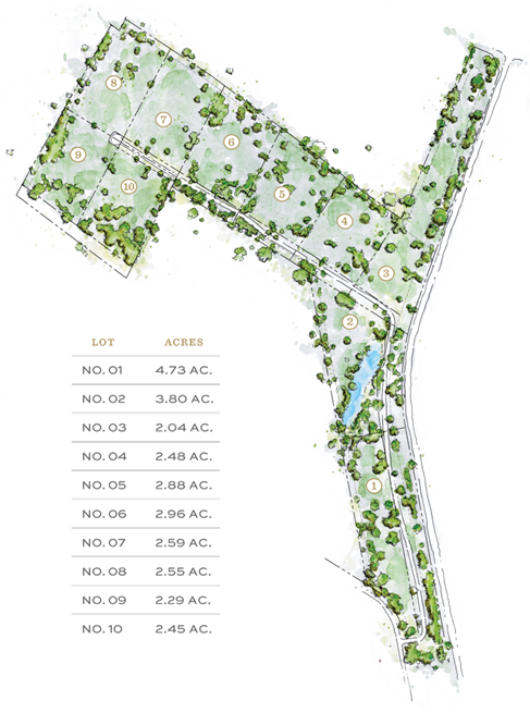 The Thicket Site Plan